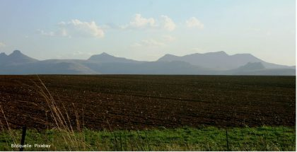 Den Boden bereiten - Feld bestellen - Blogbeitrag Unternehmenskultur